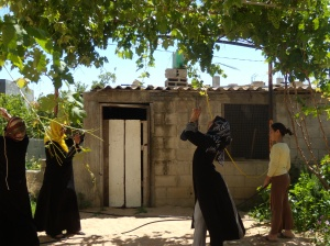 Women learning to use cameras as part of the Depicting Injustice research project. Gaza 2010